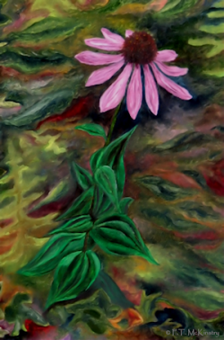 Echinacea, by F.T. McKinstry