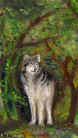 Lone Wolf, by F.T. McKinstry