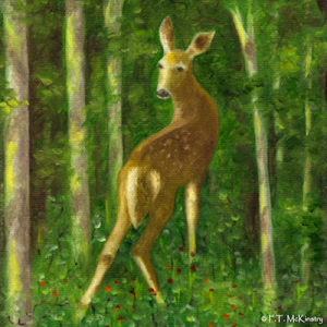 Fawn, by F.T. McKinstry