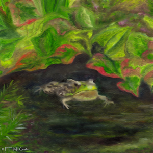 Frog Medicine, by F.T. McKinstry