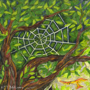 Spider Web, by F.T. McKinstry