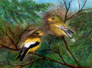 Evening Grosbeaks, by F.T. McKinstry