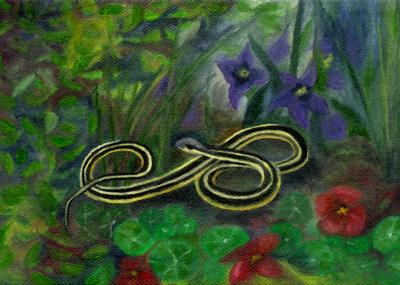 Ribbon Snake, by F.T. McKinstry