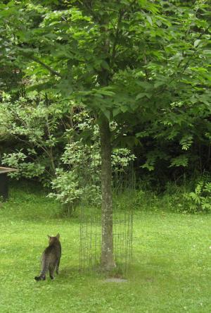 Hemlock and the Cat Thwarter