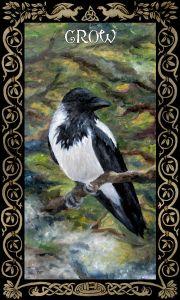 Crow Wildcard
