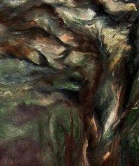 Twilit Trees